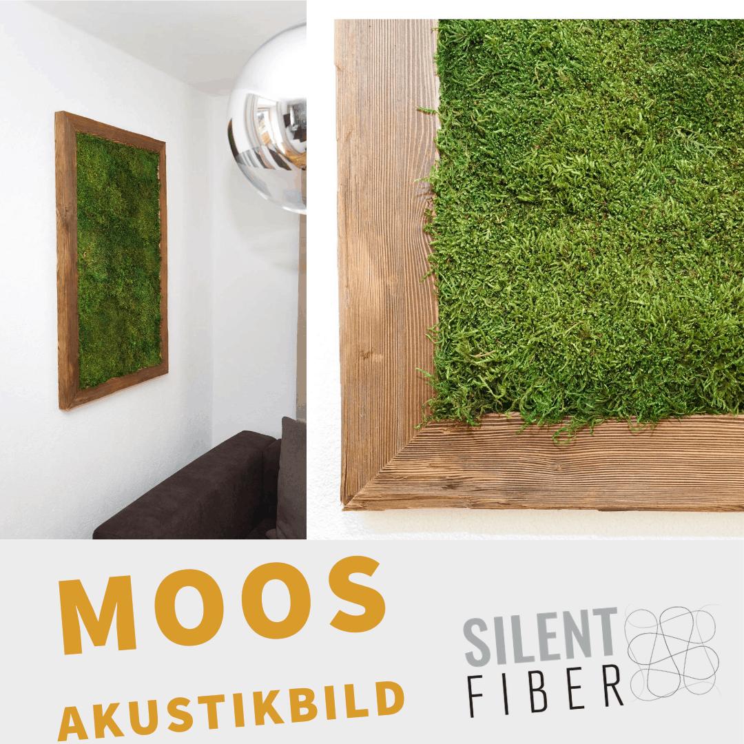 Read more about the article Moos verbessert die Raumakustik
