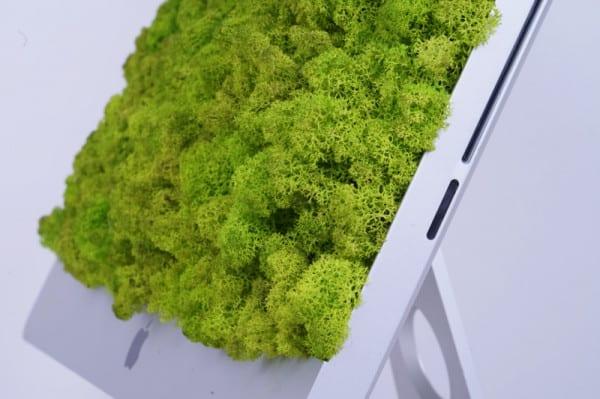 Moos Kunst imac akustik silentfiber