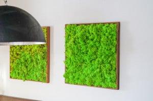 MOOS Bild mit Altholzrahmen